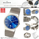SKAGEN scar gene watch men watch 233XLTTN titanium titanium blue