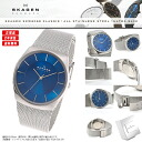 SKAGEN (scar gene) men's watch SKW6068 (classical music) KLASSIK