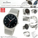 SKAGEN (scar gene) men's watch SKW6051 (classical music) KLASSIK