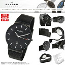 SKAGEN (scar gene) men's watch SKW6053 (classical music) KLASSIK