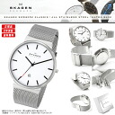 "SKAGEN Skagen watches Nordic born ultra-thin design watch! Only 8 mm ""ultra slim"" design men's men's SKW6052 KLASSIK classic stainless steel Silver."