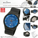 "SKAGEN Skagen watches Nordic born ultra-thin design watch! Only 8 mm ""ultra slim"" design men's men's skw6145 KLASSIK classic stainless steel blue."