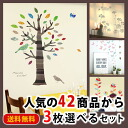 Wall sticker P e Yu! Sealed tree bird leaves branches birds Nordic cheap Interior stickers wall sticker wall sticker wallpaper seals living door plants
