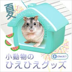 小動物夏のひえひえ特集