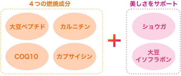 大豆ペプチド・カルニチン・COQ10・カプサイシン、の4つの燃焼成分に加え美しさをサポートするショウガと大豆イソフラボンもプラス。