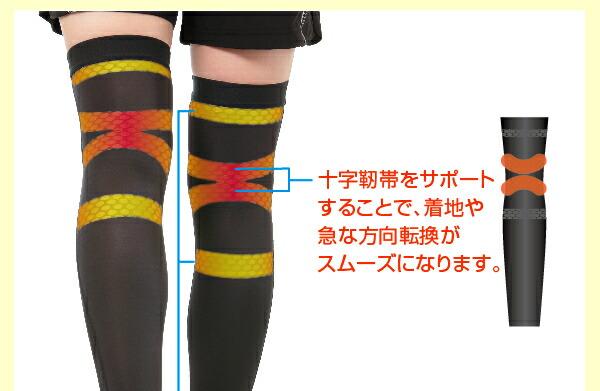 十字靭帯をサポートすることで、着地や急な方向転換がスムーズになります。