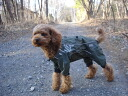 -ドッグレイン coat 'Hurtta Pro Outdoor Overall for small dogs