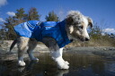 -ドッグレイン coat 'Hurtta Pro Rain coat for small dogs