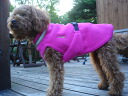 Departing from Canada! ChillyDogs fleece dog coat チリセーター M-L size