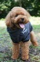 For Finland dog brand dog coat small / medium dogs