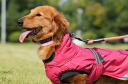 The Finnish dog brand dog coat small, medium-sized dog use