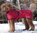 And senior Trent coat-dog rain coat for dogs