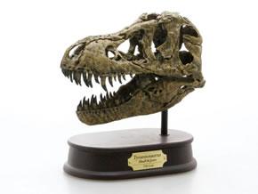 スカルジョーズモデル ティラノサウルス