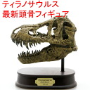 Maki dinosaur figure FDS651 Tyrannosaurus skeleton/skull & JAWS model (70551) (skull models)