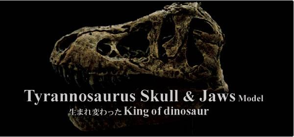 スカルジョーズモデル 最新の学説で生まれたティラノサウルス
