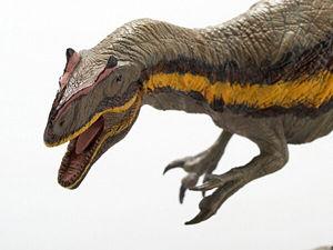 恐竜フィギュア ターシックモデル アロサウルス アップ   【楽天市場】フェバリット 恐竜フィギ