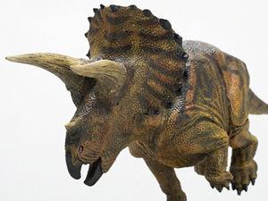 トリケラトプスの画像 p1_1