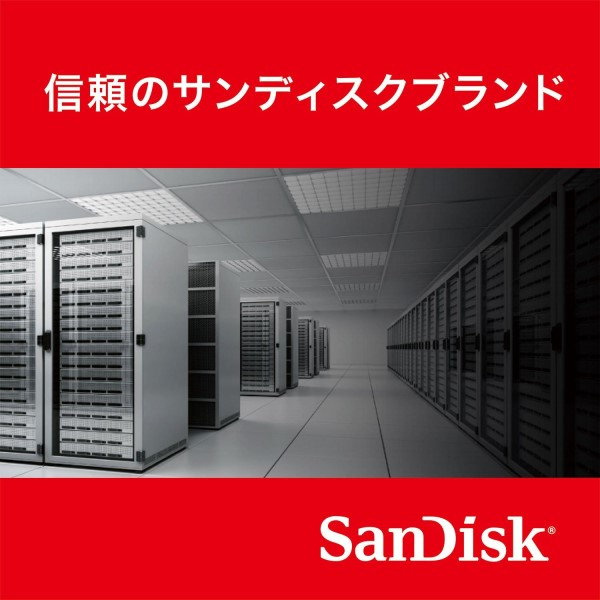 【期間限定ポイント2倍】【送料無料】サンディスク SSDプラス 240GB 2.5インチ 内蔵型 SATA3 6Gb/s 読取り:520MB/s 書込み:400MB/s 海外リテール品 SDSSDA-240G-G26