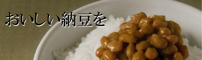 ころころ納豆
