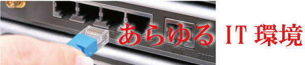 100円ケーブル