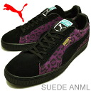 PUMA( Puma) SUEDE ANML ( suede cloth animal) black / gloxinia / team gold [shoes, sneakers shoes snake, snake] [RCP] [Rakuten championship sale _ free shipping] [Rakuten championship sale _ point]