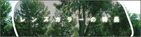 レンズカラーの特徴