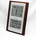 Radio digital daily watch 2006 show (SG-SKR101BR) (logging) | Watch | clocks | clocks | wooden clock