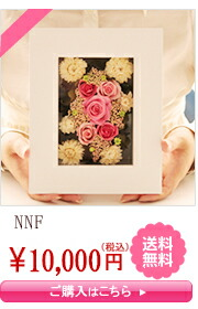 NNF����10,000�ߡ�����̵��