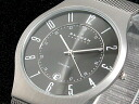 Skagen in SKAGEN ultra slim titanium watch 233 XLTTM fs3gm