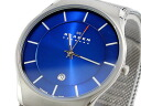 Scar gene SKAGEN quartz Lady's watch 956XLTTN fs3gm