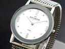 Scar gene SKAGEN Lady's watch 39LSSS1