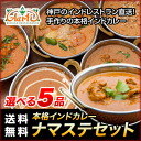 Ten meals of sets in the bloom of Indian curry mega available! (170gx10 bag)