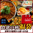Artie magic bag! From 30 kinds of cuisine India find 6 products ♪ Curry 250 g plateful! Appetite in spice!