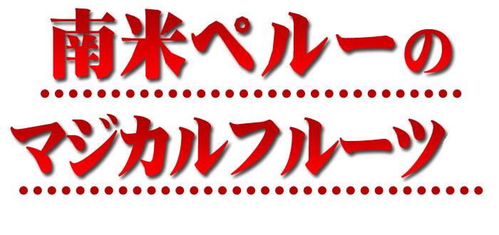 魅影网站logo设计