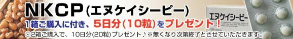エヌケイシーピー1箱ご購入に付き、5日分(10粒)プレゼント!