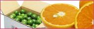 EMで栽培された沖縄のフルーツ