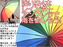 In 24 framework ◆ lane bow tie umbrella presents!◆