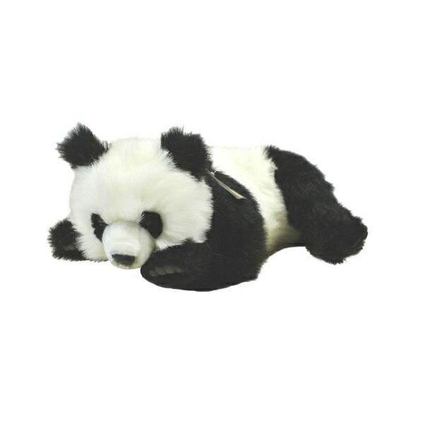熊猫牌一控灯一插座接线图
