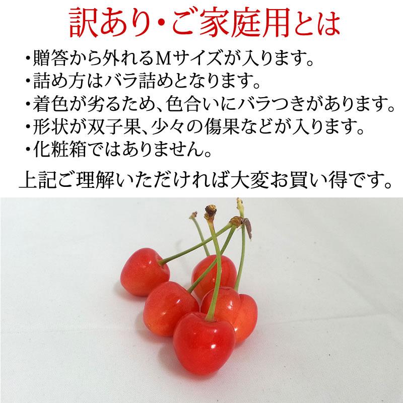 佐藤錦さくらんぼ