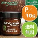 Organic botanics ヴェイパーラブ VAPOUR RUB 30 g