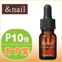 アンドネイル ピュアケラチンセラム (for nail beauty solution) 10 ml [Ishizawa Institute of nail nail nail off nail essence] fs3gm.