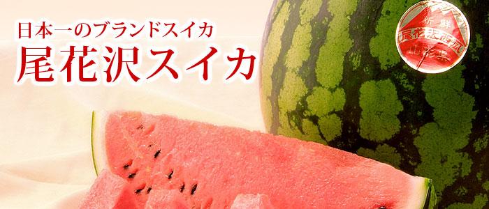 http://image.rakuten.co.jp/aionline-japan/cabinet/fr01/suika12_01.jpg