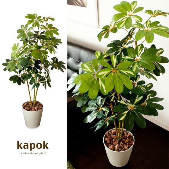 光触媒人工植物Kapokカポックグリン