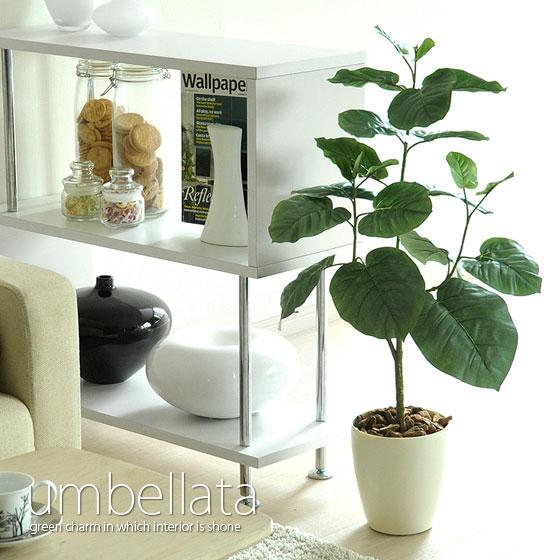 光触媒人工観葉植物ウンべラタフェイクグリン