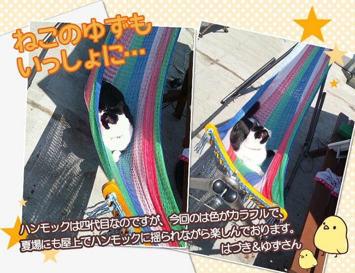 """猫とハンモック"""" /><br/><br/> <br/><br/><p class="""