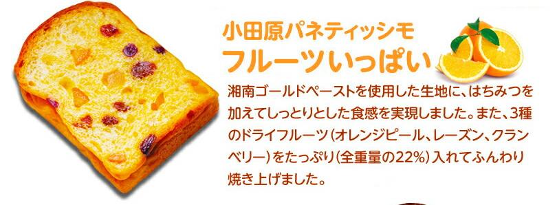 小田原パネティッシモ フルーツがいっぱい チョコっとくるみ さわやかブルーベリー