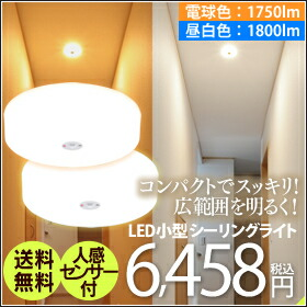 ����LED������饤��E�����