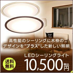LED������饤��