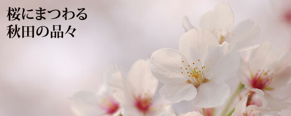 秋田の春を感じる! 桜の名品