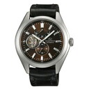 ORIENT Orient WZ0111DK Orient Star and orient star watches